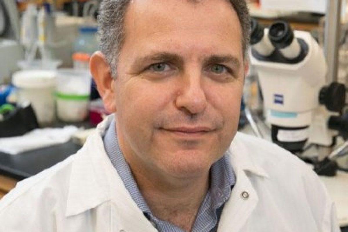 Bennett Novitch, Ph.D.